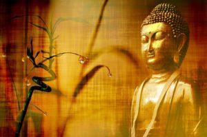 https://www.allhindi.net/बौद्ध-धर्म-क्या-है